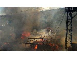 Samsun'da kırsal mahallede 4 ev yandı