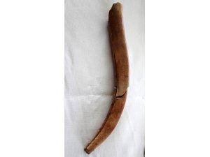 8 bin 750 yıllık kemikten yapılma tarım aleti bulundu