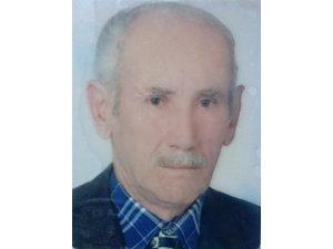 Ağaç budarken kalp krizi geçiren yaşlı adam hayatını kaybetti