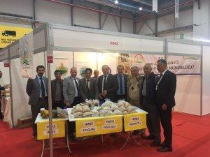 """MHP İl Başkanı Karataş: """"Ülkemizde tarımsal faaliyetler ekonomi içinde şüphesiz önemli bir pay oluşturmaktadır"""""""