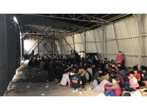 Van'da 301 kaçak göçmen yakalandı