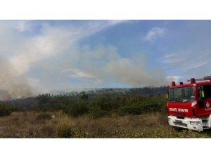 Sazlıbosna Barajı kenarındaki makilik alanda yangın