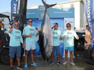 İzmir'de 190 kiloluk dev balık