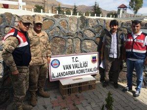 Kafes avcılığı yapan şahsa 3 bin 544 TL idari para cezası kesildi