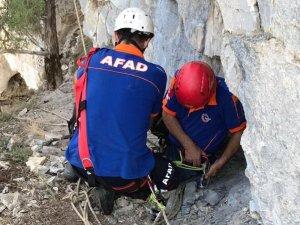 Mağarada mahsur kalan keçileri AFAD kurtardı