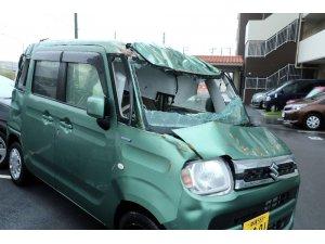 Japonya'yı vuran Trami tayfununda ölü sayısı 4'e yükseldi