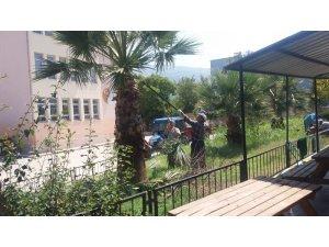Yunusemre'de park ve bahçelere kış bakımı