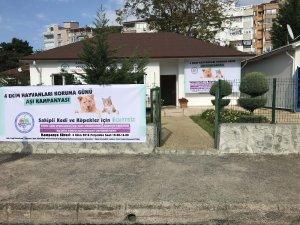 Kdz. Ereğli Belediyesi'nden kedi ve köpekler için aşı daveti