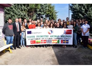 Avrupalı gençler hayvan hakları için Çorlu'da buluştu