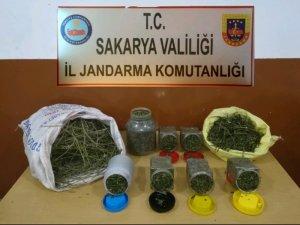 Eylül ayında düzenlenen uyuşturucu operasyonlarında 7 kişi tutuklandı