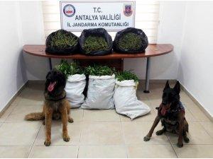 Antalya'da uyuşturucu operasyonlarına 15 tutuklama