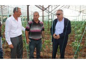 Antalya'da solucan gübresi ile tarım uygulaması yapıldı