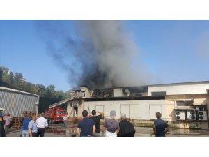 Trabzon'da süt ürünleri imalatı yapan bir fabrikada yangın çıktı