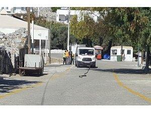 Kablo hırsızları zabıtanın dikkatiyle yakalandı