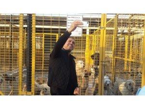 Haluk Levent, Nilüfer'deki Hayvan Bakım Merkezi'ne hayran kaldı
