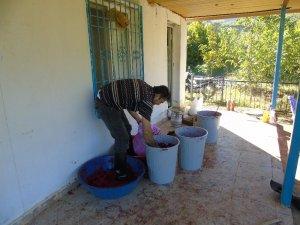 Gaziantep'te nar ekşisi telaşı başladı
