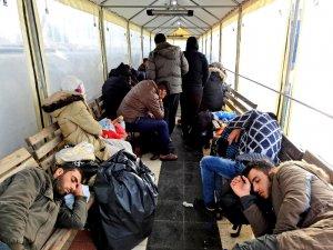 Çeşme'de 110 sığınmacı yakalandı