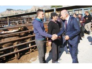 Kuyucak'ta genç çiftçilere damızlık hayvanları teslim edildi