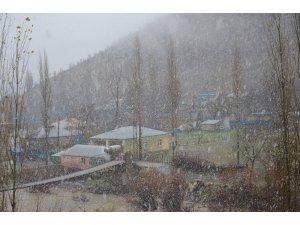 Beytüşşebap'ta kar yağışı etkili oldu