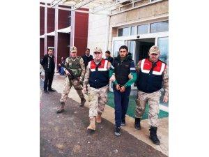 Akçakale'de 1 PKK'lı terörist yakalandı