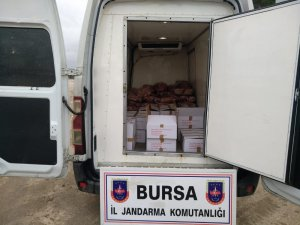 Bursa'da 1 ton kaçak kesim et ele geçirildi