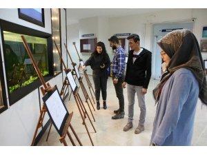 Üniversite öğrencilerden karikatür sergisi