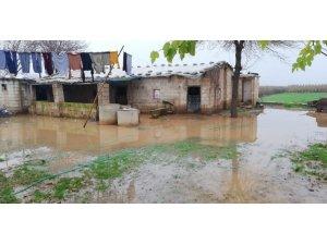 Suruç'ta şiddetli yağmur su baskınına neden oldu