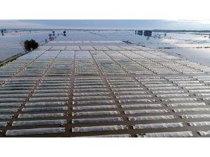 Türkiye'nin kışlık sebze üretim merkezinde seralar sular altında kaldı
