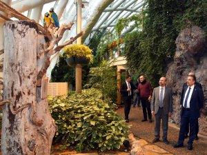 Vali Toprak, Tropikal Kelebek Bahçesi'ni gezdi