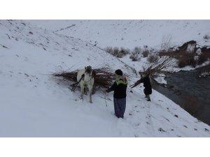 Köylülerin karlı dağlarda yakacak telaşı