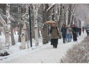 Türkiye'nin en soğuk ili Kars oldu