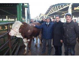 Kırmızı et üreticilerinden yem tepkisi