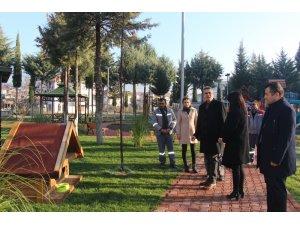Bucak'ta parklara kedi ve köpeklere kulübeler konuldu