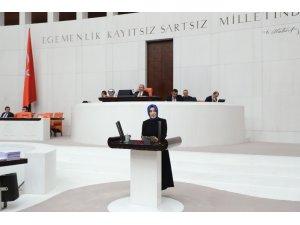 AK Parti Trabzon Milletvekili Ayvazoğlu 2019 yılı merkezi bütçe kanun teklifi görüşmelerinde bir konuşma yaptı