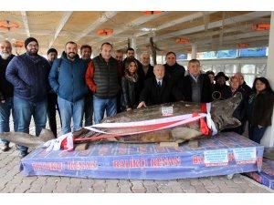 Türkiye Deniz Canlıları Müzesi, yarıyıl tatilinde ziyaretçileri bekliyor