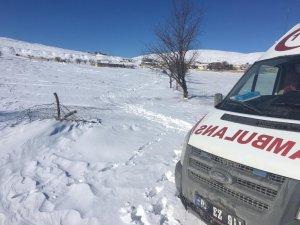112 ekibi mahsur hastayı sedyeyle 2 kilometre taşıdı