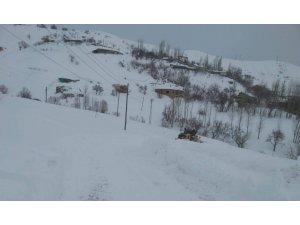 Hakkari'de 179 yerleşim yeri kapandı