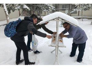Üniversiteli öğrenciler kuşlar için doğaya yem bıraktı