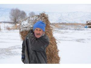 Sultan Sazlığında kış ve yaşam
