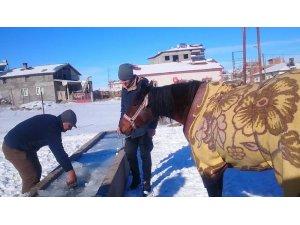 Yalakta ki buzu kırıp atına su içirdi