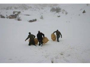 Elazığ'da yaban hayvanları için 4 ton yem bırakıldı