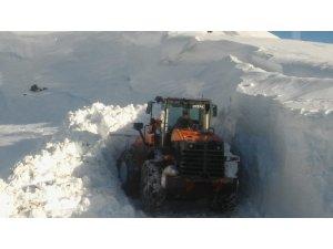 Sason'da kardan kapanan 49 köy yolunun 20'si ulaşıma açıldı