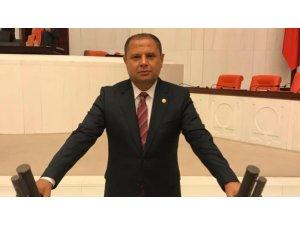 MHP'li vekilden Bakan Pakdemirli'ye 'kenevir' mektubu