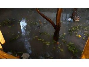 Adana'da evleri su bastı