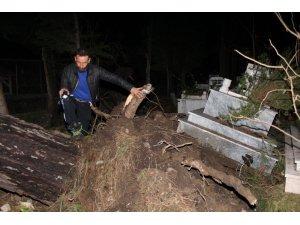 Kemer'de fırtına ağaçları devirdi, mezar taşlarını yerinden oynattı