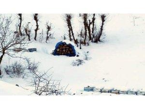 Kar arıcıları mutlu etti