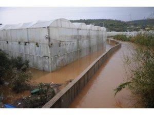 Lemas Çayı taştı, bahçeleri ve seraları su bastı