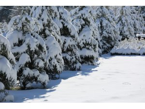Uşak'ta kar yağışı sonrası kartpostallık görüntüler
