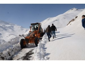 Beytüşşebap'ta kar yağışı yeniden başladı