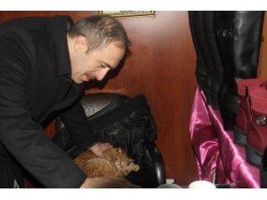 Başkan Epcim'den hayvan sever esnafa teşekkür